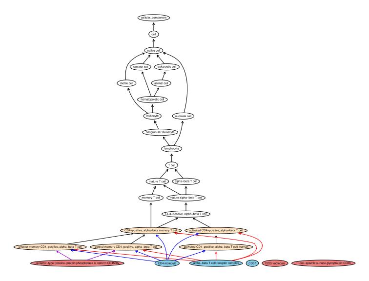 tree_CD3+CD4+CD45RA-CD27-CD28-CD57+