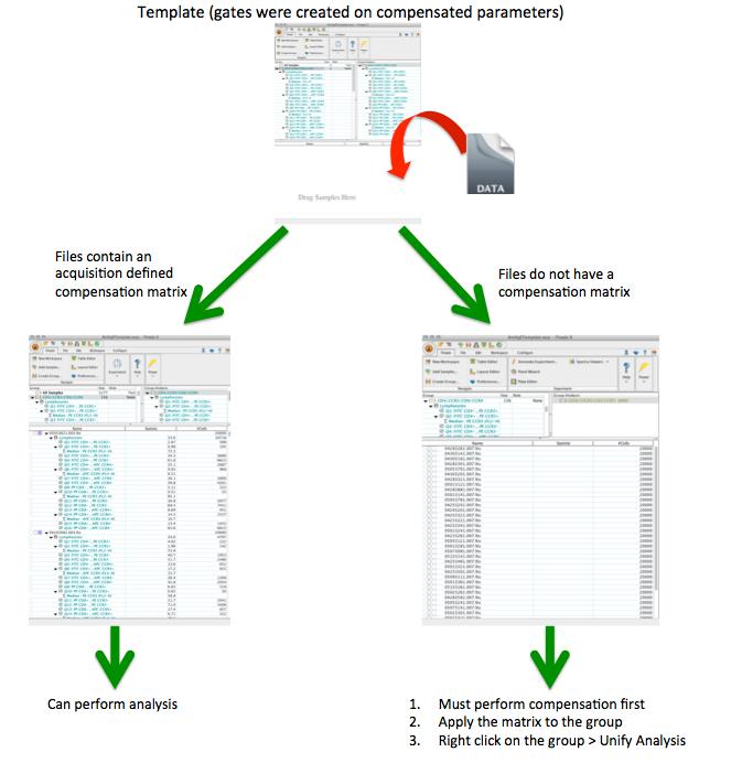 template-comp_workflow_pptx